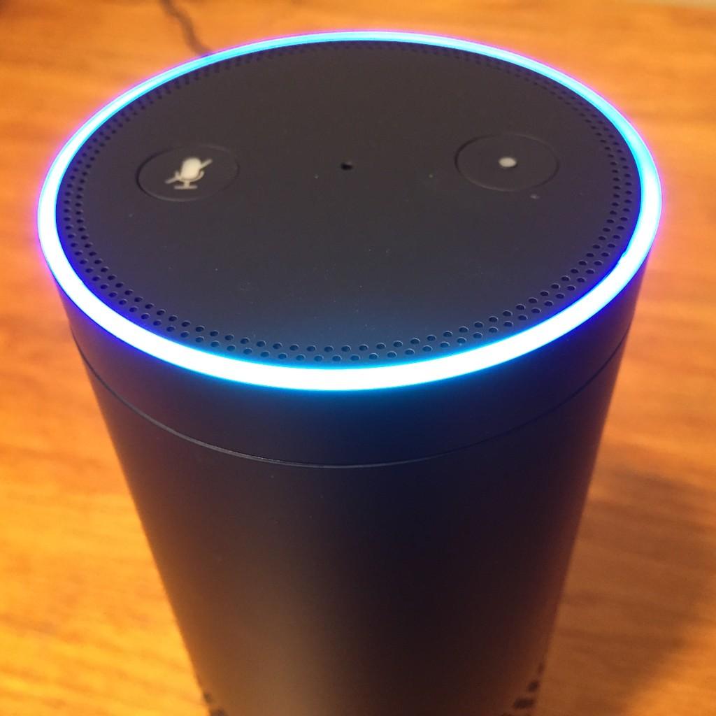 Echo Ring Voice Translator